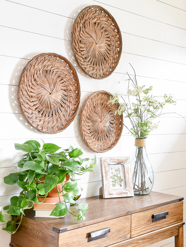natural decor in entryway